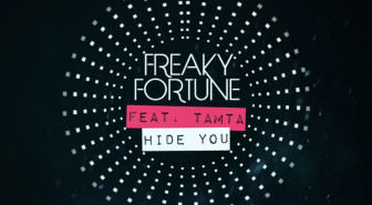 Freaky Fortune ft. Τάμτα - Hide You