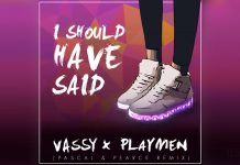 Vassy x Playmen - I Should Have Said - Pascal & Pearce remix - Hit Channel